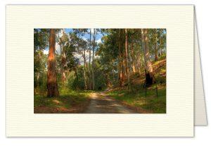 PhotoArt Card H011