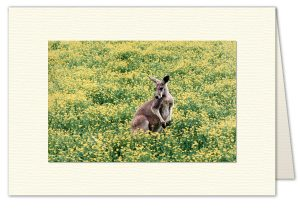 PhotoArt Card H015