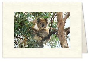 PhotoArt Card H016