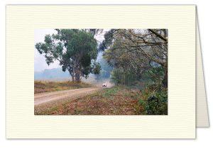 PhotoArt Card H019