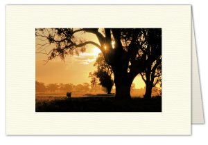PhotoArt Card H060