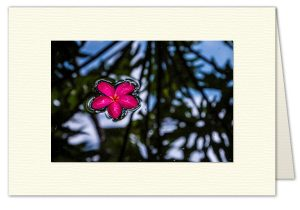PhotoArt Card H067