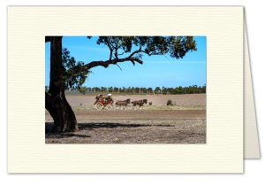 PhotoArt Card H075