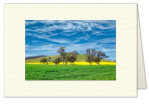 PhotoArt Card H084