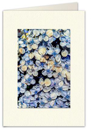 PhotoArt Card V038